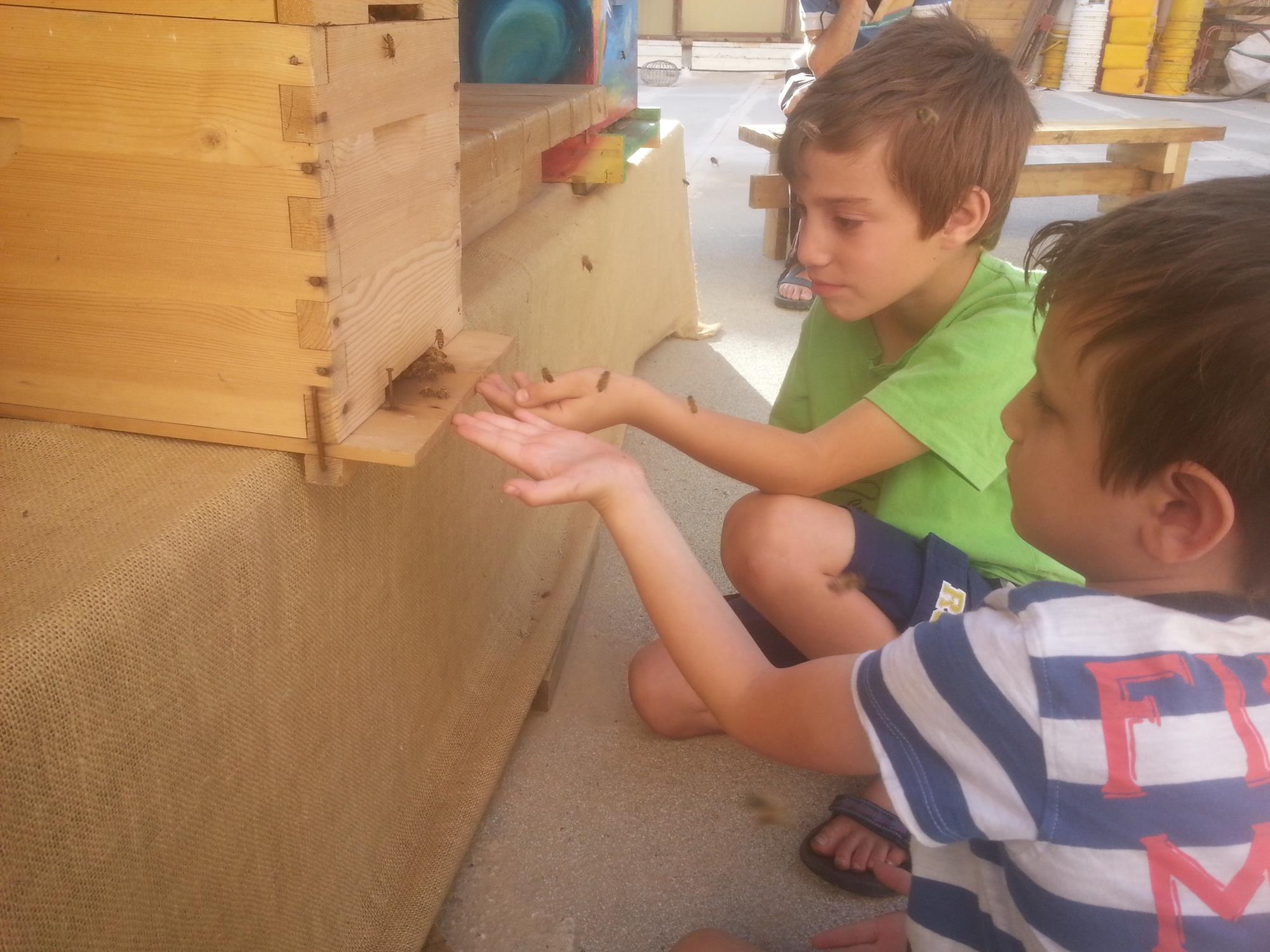 """קורס לגידול דבורים ביודינאמי ביתי בשילוב סדנת """"ירוק בעיר"""" לחקלאות עירונית"""