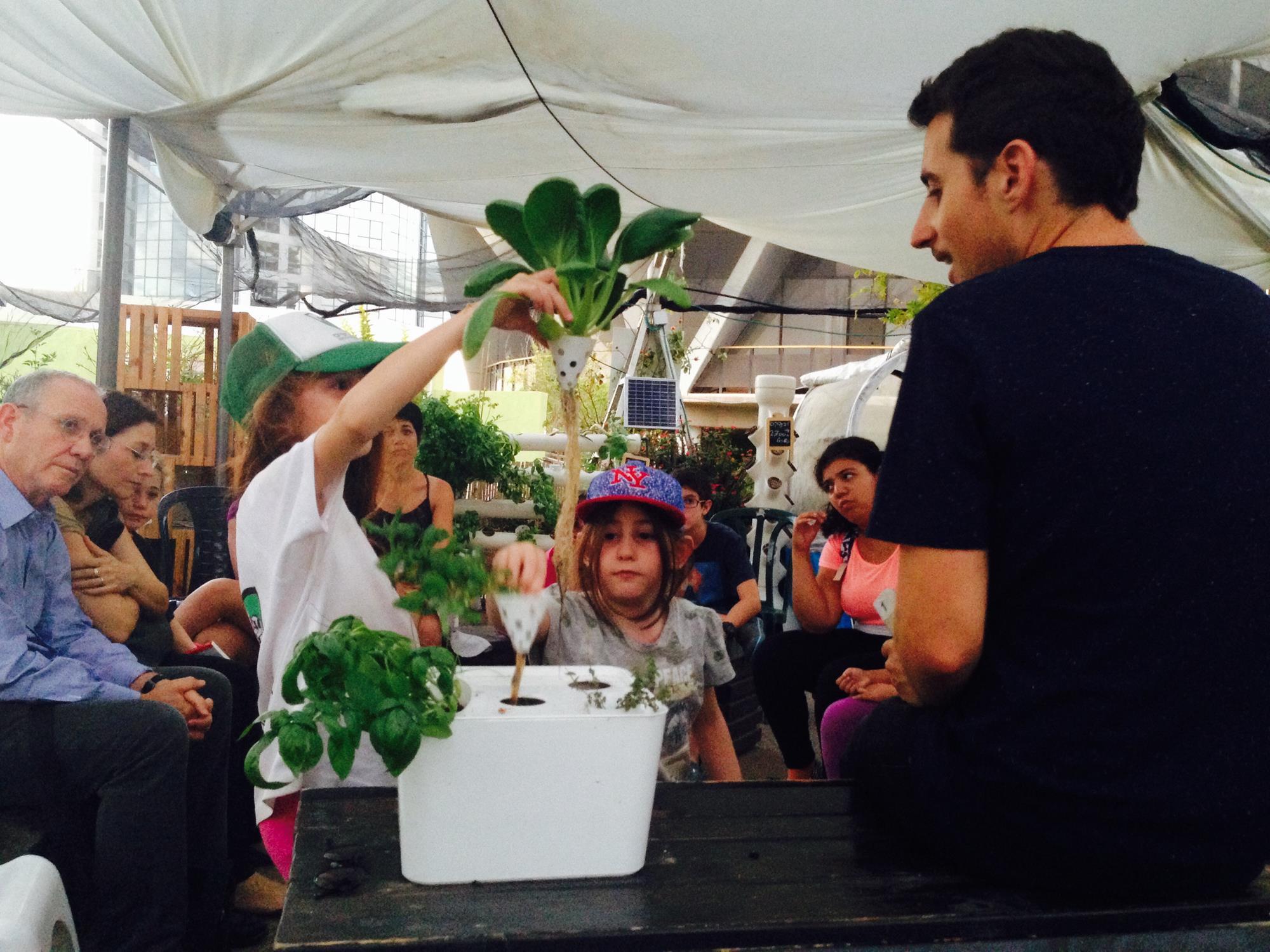להיות חקלאים עירוניים – סדנה להורים ונוער בחוות ירוק בעיר